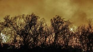 Advierten sobre riesgos de incendios forestales