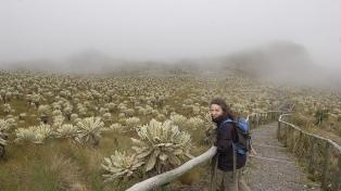 """Bióloga argentina reconocida por Science: """"Hay una relación simbólica con la naturaleza"""""""
