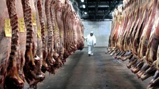 Las exportaciones de carne vacuna aumentaron 34% en 2017