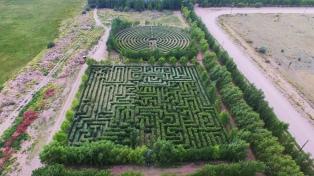 Sembró 100.000 plantas y construyó laberintos en su jardín para vecinos y turistas