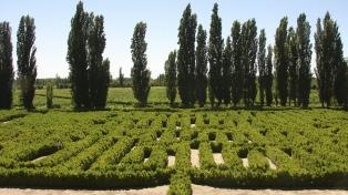 Fiestas, vino, cultura y deportes son la base de la oferta de Mendoza en febrero