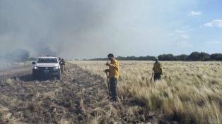 Declaran la emergencia agropecuaria en Mendoza, La Pampa y Chaco