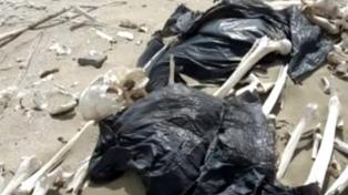 Los restos hallados en Península de Valdés son de pueblos originarios