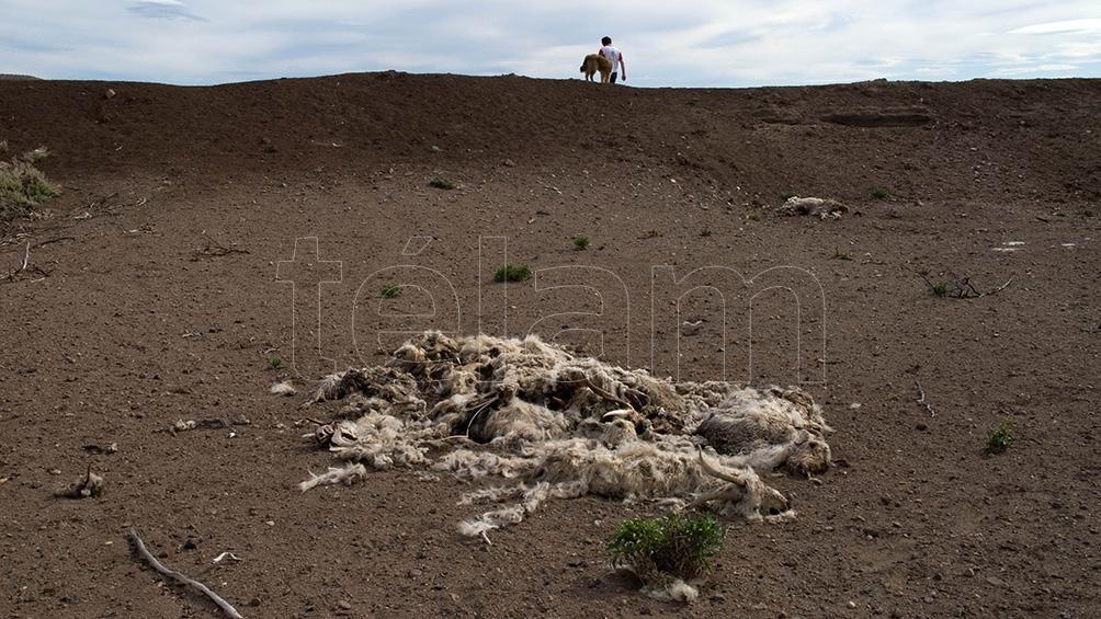LA PAMPA: La lluvia cambió la situación de la sequía en algunos lugares de la provincia