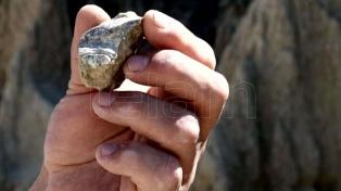 Descubren restos fósiles de 50 millones de años de antigüedad en La Pampa