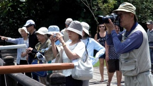 Enero registró el mayor ingreso de turistas extranjeros a la Argentina en seis años