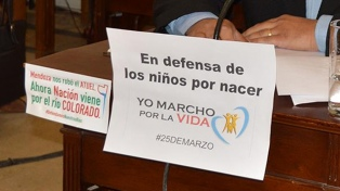 El Concejo Deliberante de Santa Rosa aprobó una ordenanza antiaborto