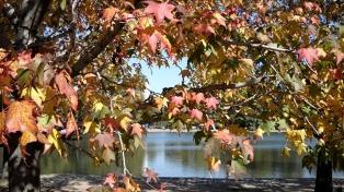 """Comienza el otoño, que será """"benévolo"""" y con """"precipitaciones inferiores a las normales"""""""