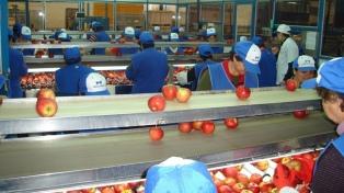 La empresa Moño Azul ratificó la continuidad de su empacadora