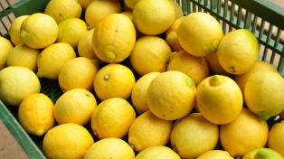 Agroindustria avanza con la apertura de nuevos mercados para carne, limones y sorgo