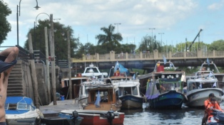 Unos 20 mil isleños están sin transporte fluvial en el Delta por un reclamo sindical