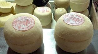 Secuestraron casi 1.000 kilos de queso por riesgo sanitario