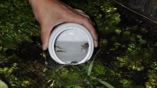 Reintroducen ejemplares de anfibios endémicos en la localidad de Valcheta
