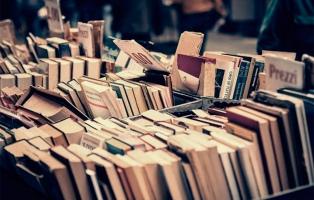 Se celebra el Día Mundial del Libro con actividades y suelta de ejemplares