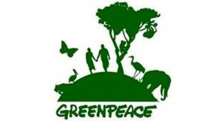 El director ejecutivo de Greenpeace pidió licencia por las denuncias de acoso