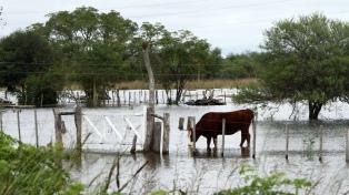 Ascienden a más de 500 las personas evacuadas por las inundaciones