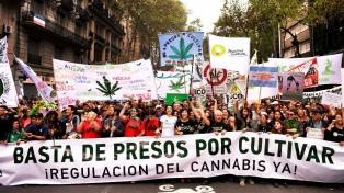 Miles de personas marcharon por despenalización del  autocultivo de cannabis