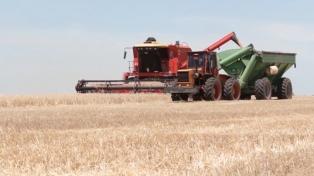 Finalizó la cosecha de trigo en la zona núcleo con un volumen de 4,4 millones de toneladas