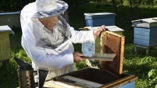 La Argentina acordó exportar miel a China