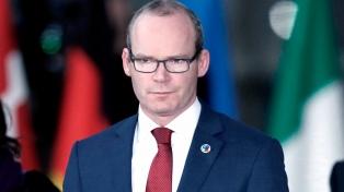 El viceprimer ministro cristiano y conservador pide reformular la ley de aborto
