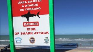 Un tiburón mató a un bañista de 18 años cerca de la ciudad de Recife