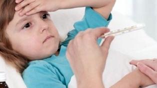 Detectan otro caso de gripe A y ascienden a 24 los afectados en las escuelas