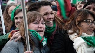 Entre llantos y abrazos, una multitud festejó la media sanción de la ley en la plaza