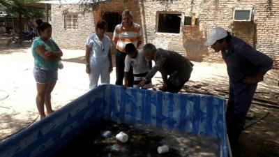 Inician operativo sanitario para prevenir casos de dengue