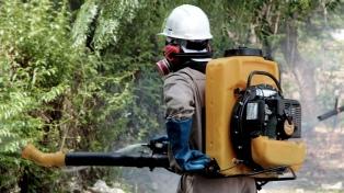 Intensifican los operativos de fumigación para prevenir el dengue