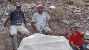 Descubren una nueva especie de dinosaurio de 110 millones de años
