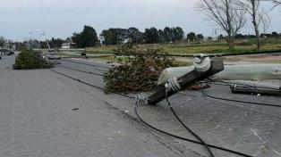Árboles caídos y cortes de energía eléctrica por temporal en Bahía Blanca