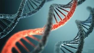 Son 23 mil los condenados por violación que integran el registro de ADN