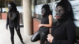"""Guerrilla Girls: """"Los museos están preservando la historia de la riqueza y el poder"""""""