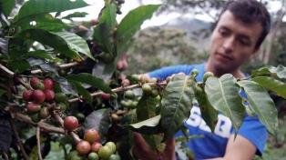 """La Federación Agraria pidió """"políticas adecuadas"""" para el sector"""