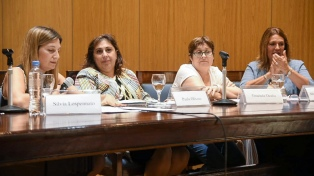 "Diputada Campagnoli ""lamenta"" ausencia del FpV para debatir ""ficha limpia"""