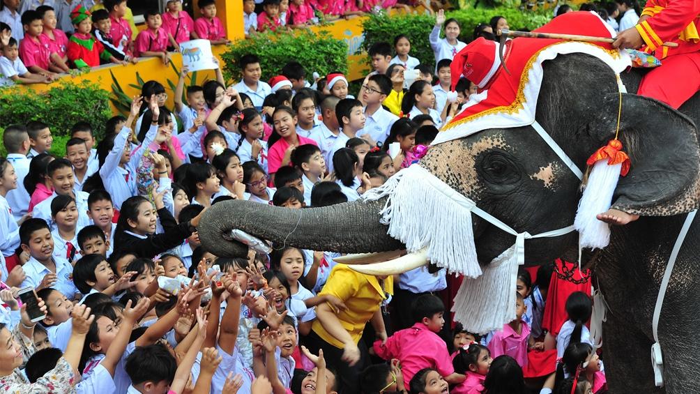 Tailandia. Un elefante es el vehículo ideal para salir a repartir regalos.