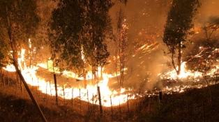 Decretan estado de catástrofe en tres regiones por incendios forestales
