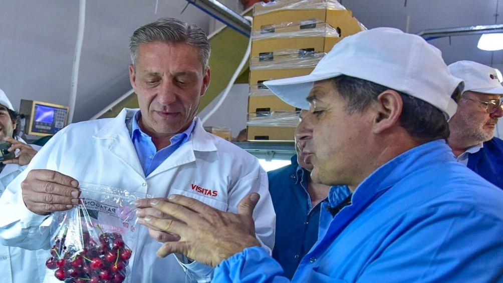 Parten las primeras 160 toneladas de cerezas hacia China