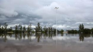 Las lluvias de enero causaron pérdidas por 4.000 millones de pesos a la actividad agropecuaria
