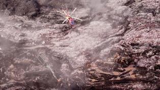 La cantidad de muertos por el alud provocado por una minera llega a 121