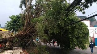 Temporal en Río de Janeiro: ya son seis los muertos y declaran estado de crisis