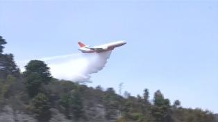 Al menos 53.000 hectáreas arrasadas por los incendios forestales en el centro y sur chileno
