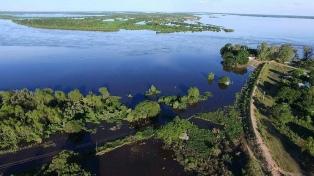 Se perdieron por lluvias unas 387.000 hectáreas sembradas