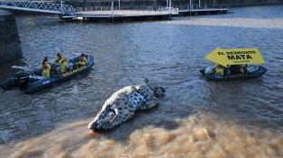 Greenpeace mostró un yaguareté muerto como protesta por los desmontes