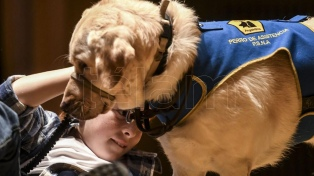 Cinco chicos con trastorno autista recibieron perros de asistencia