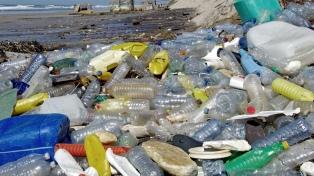 Más del 80% de los residuos en las playas bonaerenses son plásticos