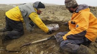 "Hallan restos de un reptil marino similar al ""monstruo del Lago Ness"""