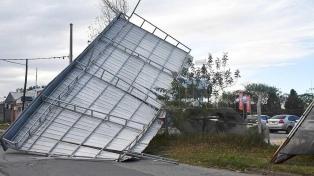 Árboles caídos, cortes de luz y suspensión de clases por fuertes vientos en varias provincias