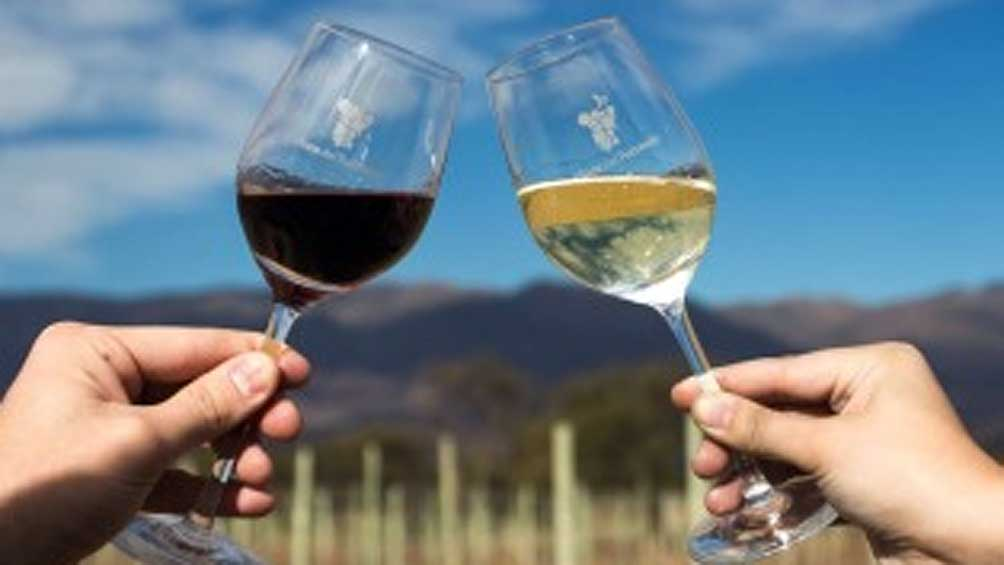 Las exportaciones de vinos crecieron un 11%