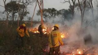 """Declaran """"estado de desastre"""" por incendios en municipios bolivianos que afectan una reserva natural"""